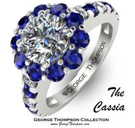 The Blue Cassia